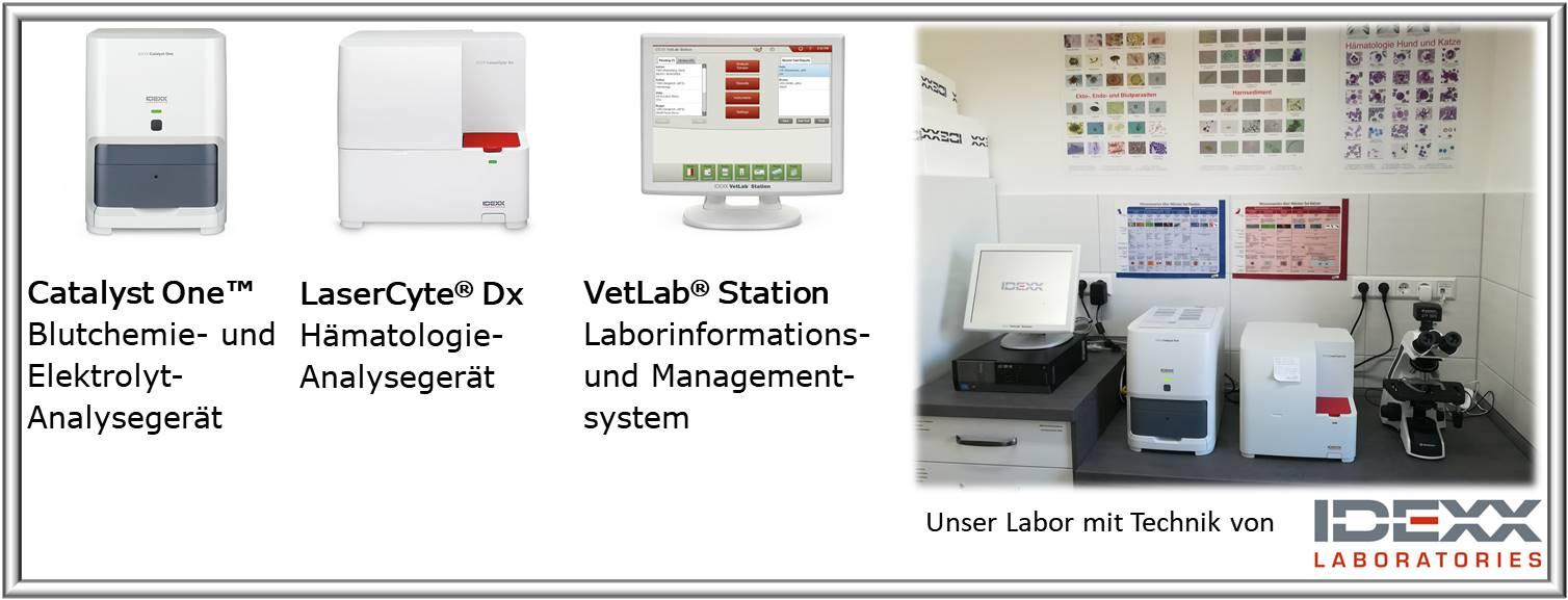 Hochmoderne Labordiagnostik direkt vor Ort